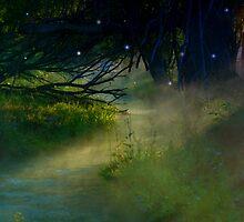 Where The Fairies Dwell by charlena