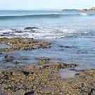 Goat Island at Ulverstone, Tasmania by gaylene