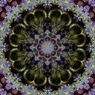 Bee Mandala by Elisa Camera