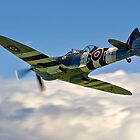 Spitfire T.9 MJ627/9G-P G-BSMB departing by Colin Smedley
