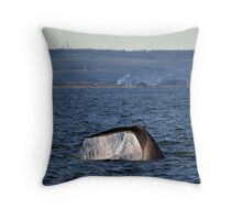 Southern Right Whale 8 Throw Pillow