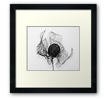 Protection ~ Seedhead  - JUSTART © Framed Print