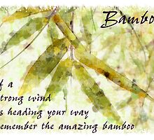 Bamboo In A Gentle Rain....strong wind by Karen Erdmann