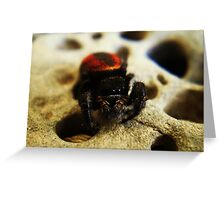 Spidey-Man Greeting Card