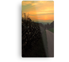 Cornfields with sundown | landscape photography Metal Print