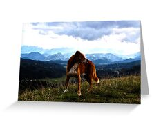 Wild Dog Greeting Card