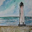 St George Island Florida Lighthouse by derekmccrea