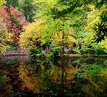 Reflections of Autumn by KeepsakesPhotography Michael Rowley