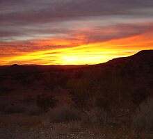 Days End Mojave by Jerry Stewart