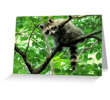 Yeah, I'm just hangin' out. Whatchu doin'? Greeting Card