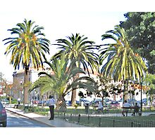 Streetscape with Palmes Photographic Print