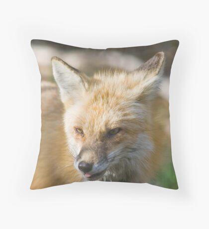 The Real Rasberry Throw Pillow