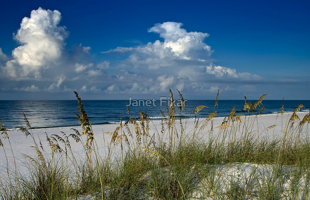 Coastal Bliss by Janet Fikar