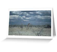 Giraffe in Etosha Greeting Card