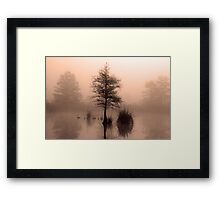 On top of the world Framed Print