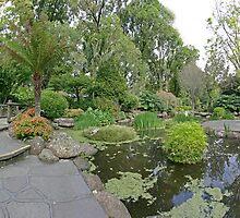 Fitzroy Gardens: Pond by Colin  Ewington