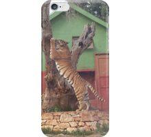 Beautiful Tiger iPhone Case/Skin
