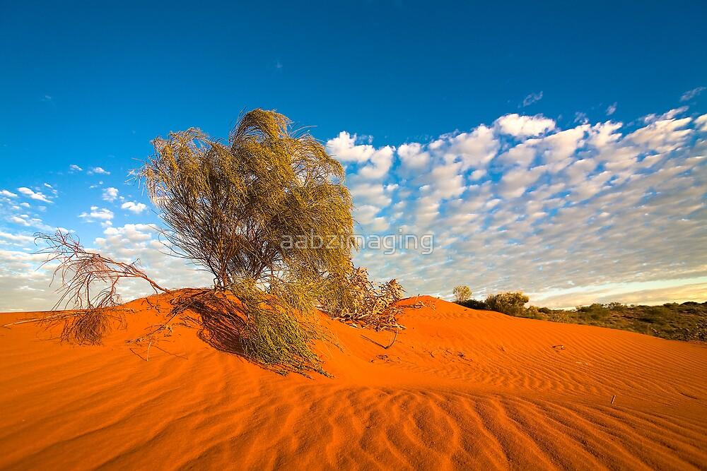 Outback by aabzimaging