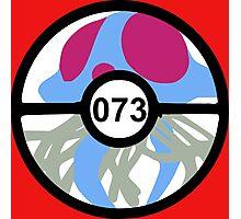 Pokemon 073 Photographic Print
