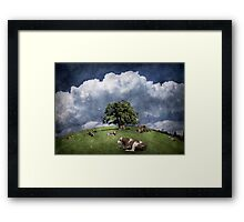 15 cows on the meadow Framed Print