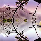 Reflected Chinese Landscape by philipclarke