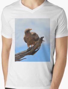 Yellow Billed Kite - Looking at Heaven Mens V-Neck T-Shirt