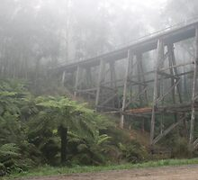 Trestle Bridge by Graeme Hort