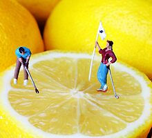 Golf Game On Lemons by Paul Ge