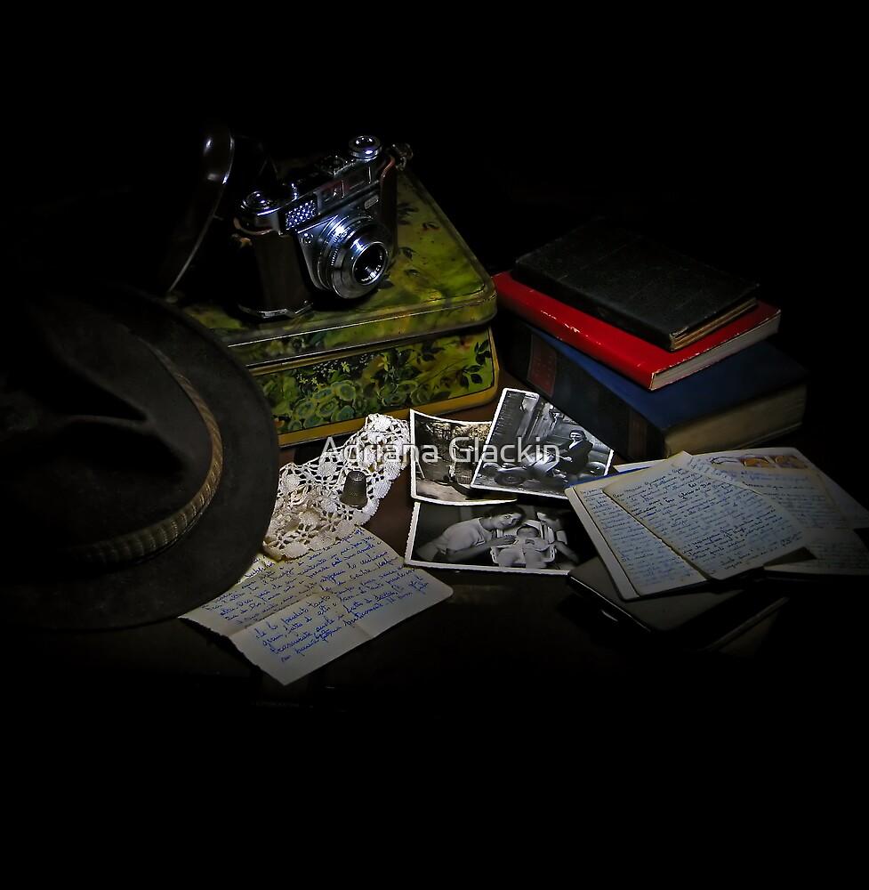Hidden Treasures by Adriana Glackin