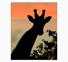 Giraffe Sunset - African Wildlife - Majestic Peace T-Shirt