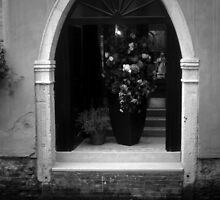 Venetian Driveway in BW by ArtistryBySonia
