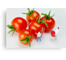 Chefs And Cherry Tomatoes Canvas Print