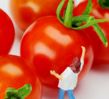 Chefs And Cherry Tomatoes Sticker