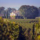 French Countryside near Saint Emilion by Elizabeth Thomas