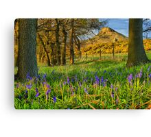Roseberry Topping & Bluebells Canvas Print