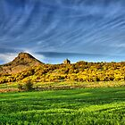 Roseberry Topping  by Stewart Laker