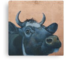 """The Grass Is Always Greener..."" Cow Gazing Over Fence Canvas Print"