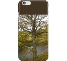On the Banks of the Wharfe iPhone Case/Skin