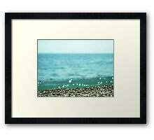 Sea coast, pebble stone Framed Print