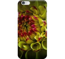 A dahlia for Bill iPhone Case/Skin