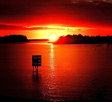 Land of the Midnight Sun by Kathy Russell