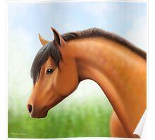 Dappled Bay Show Horse Poster
