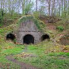 Lime Kilns by Tom Gomez