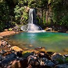 Waiau Falls Bright Water by Ken Wright