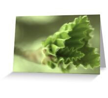 germination Greeting Card