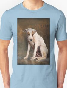 handle with care,  street dog portrait T-Shirt