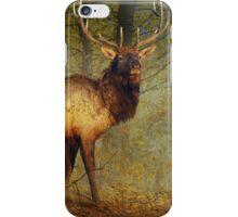 aspen forest bull elk iPhone Case/Skin