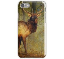 aspen forest bull elk iPhone Case/Skin
