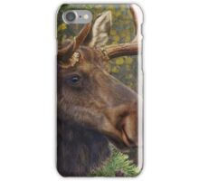 bull moose portrait amid aspen and spruce iPhone Case/Skin