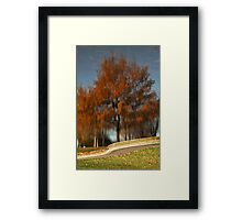 Greenwich Park Reflection Framed Print